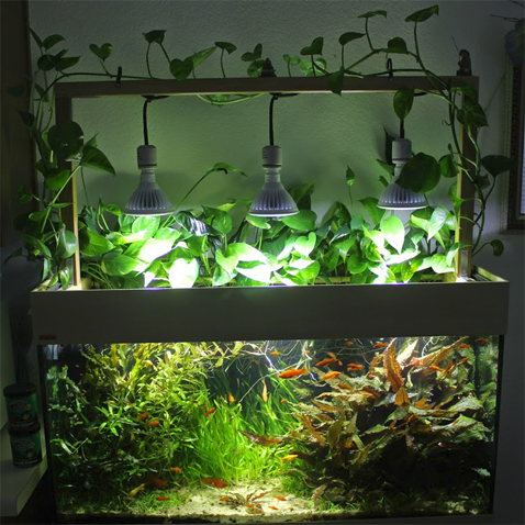 aquaworld aquarium do it yourself diy led aquarium lighting system. Black Bedroom Furniture Sets. Home Design Ideas